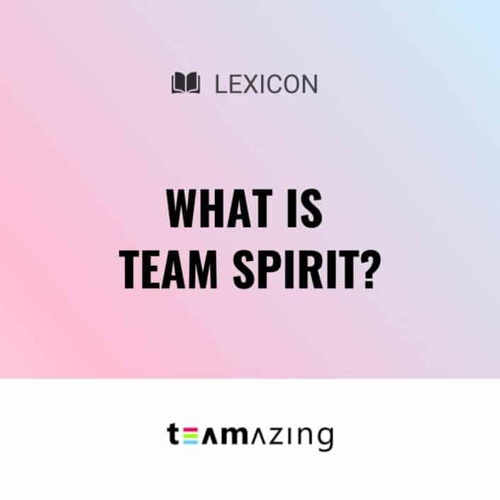 What is team spirit?