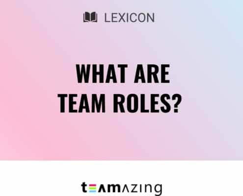 What are team roles?